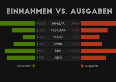 Infografik Einnahmen/Ausgaben